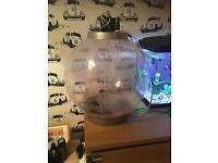 30 ltr biorb fish tank