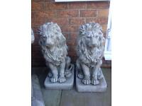 Large pair stone garden lions, fantastic detail. New