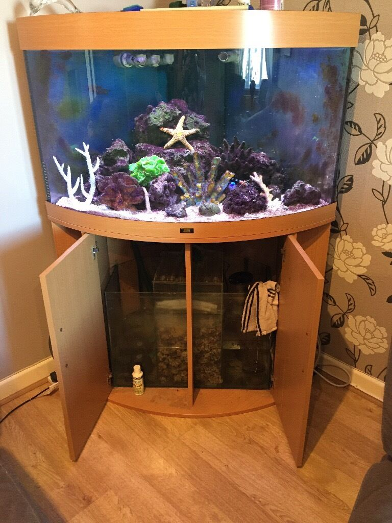 Juwel 180 corner marine fish tank in weymouth dorset for Corner fish tank for sale