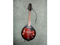 Stagg acoustic electric mandolin with strap