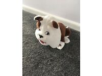 Churchill dog