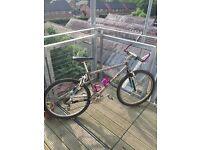 1993 Marin Titanium FRS XTR M900 VERY rare Collectors Item Original Full Suspension Mountain Bike
