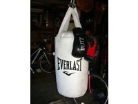 Everlast Punch bag and leather ladies or junior sized gloves
