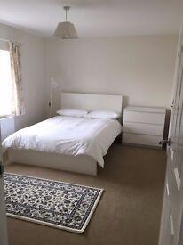 DOUBLE ROOM EN SUITE TO RENT - SHARING OF HOUSE in TISBURY
