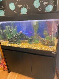 Fish tank full set up & cabinet