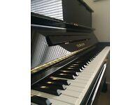Professional Piano Tutor / Voice coach