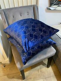 2 Lovely Velvet Cushions