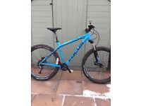 Focus bold mountain bike