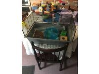 Hamster cage with accessories for sale