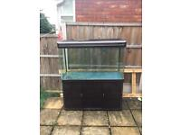 All pond solutions 4ft fish tank