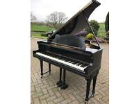 Steck black baby grand piano| Belfast pianos | free delivery |