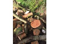 Unseasoned firwood