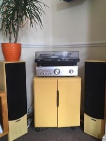 Retro Mustard Yellow Cupboard - for records, amplifiers, books, other storage