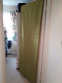 Silk green curtains with 2 cushions cover