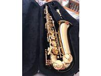 Saxophone Trevor James alpha