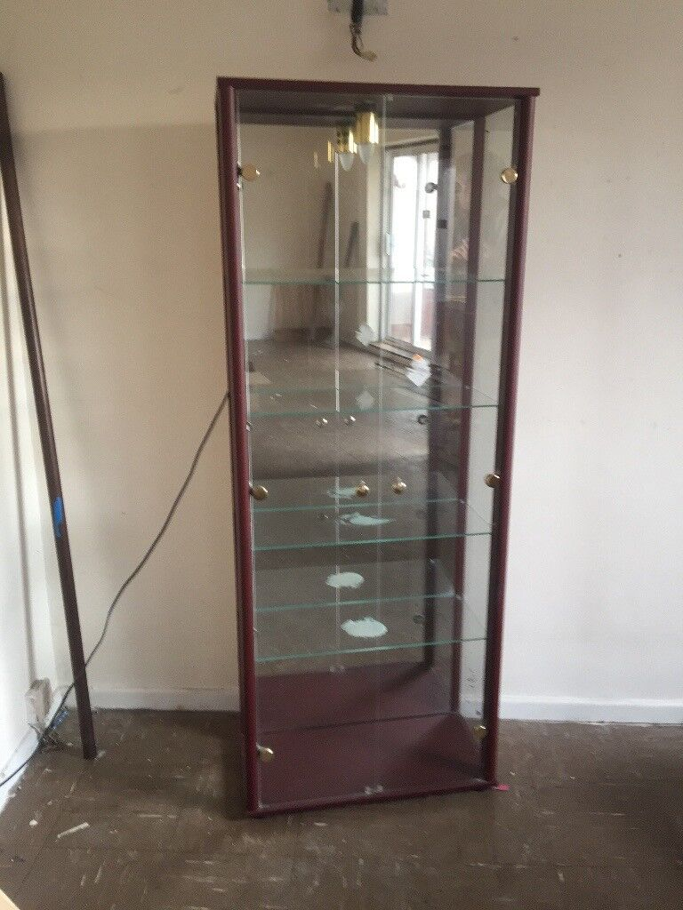 Glass Display Cabinet with Lights and 4 Glass Shelves