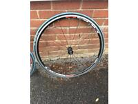 Shimano WH-R501 Front and Rear Wheels