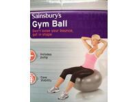 Gym ball /birthing ball & pump
