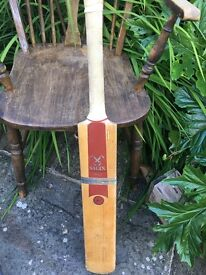 Salix daemon Cricket bat