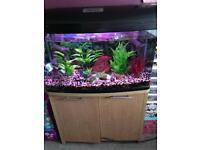AQUASTYLE 850 tropical aquarium