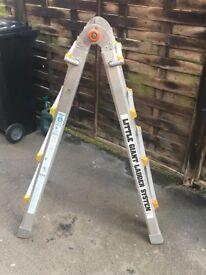 Little Giant Ladder System.