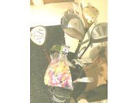 golf clubs/bag/balls/pins