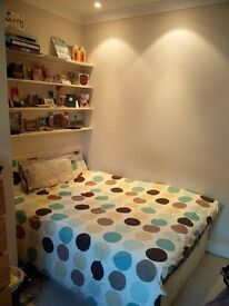 Large double bedroom available from late Jan/early Feb in Southfields - £650 pcm excl bills