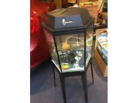 Hexagonal fish tank and stand - includes various accessories as seen.
