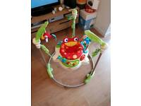 Fisher Price Rainforest Jumper Jumperoo Exercise Baby Gym