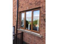 PVC Windows - Oak effect