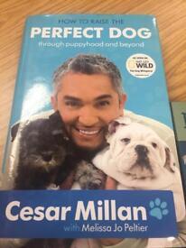 Cesar Milan hardback book