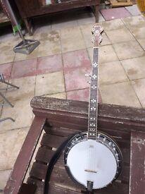 Pilgrim burr walnut banjo