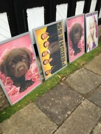 Large Frames and Posters