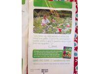 2 X cottage garden seed mix-Sarah Raven