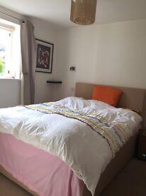 Luxury modern one big bedroom flat to let