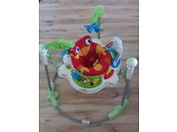 Rainforest jumperoo (Fisher-Price) for sale - immaculate condition