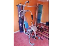 York G201 Vertical Multigym