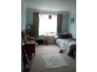 Large bright sunny room in Hove