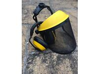 Safety visor and ear defenders
