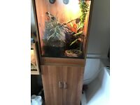 Chameleon Vivarium for sale