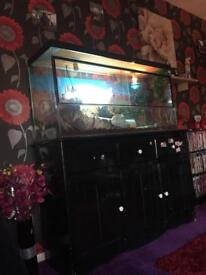 Glass vivarium 4ft by 2.5ft (approx)
