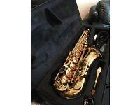 Sakkusu Alto Saxophone - Gold Lacquer