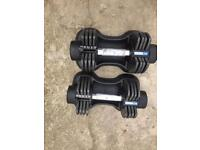 2x pro fitness 12.5kg adjustable dumbells