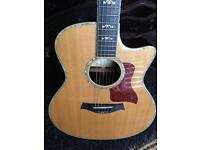Taylor Fall Limited Acoustic Guitar