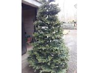 Lovely artificial CHRISTMAS TREE from BLACK BOX