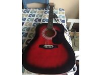 Falcon Acoustic Guitar With TGI Case