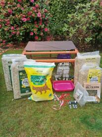 Two Doe Mini Lop rabbits 13weeks (hutch, run, food, accessories bundle available)