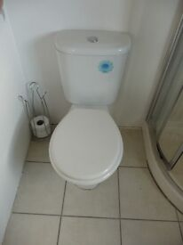 White pedestal low flush toilet and sink