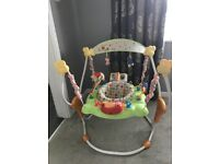 Winnie the Pooh and friends baby bouncer/jumparoo