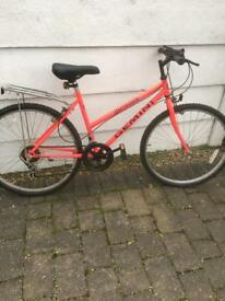Girls Gemini Outrider mountain bike